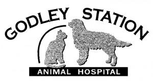 Godley-Station
